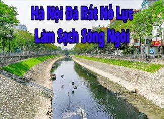 avata-Ha-Noi-da-rat-no-luc-lam-sach-song-ngoi